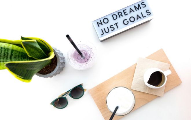 no dreams just goals plant sunglasses flatlay