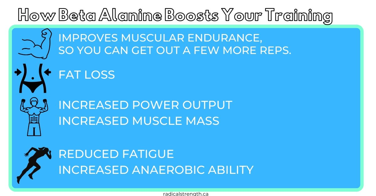 beta alanine pre workout