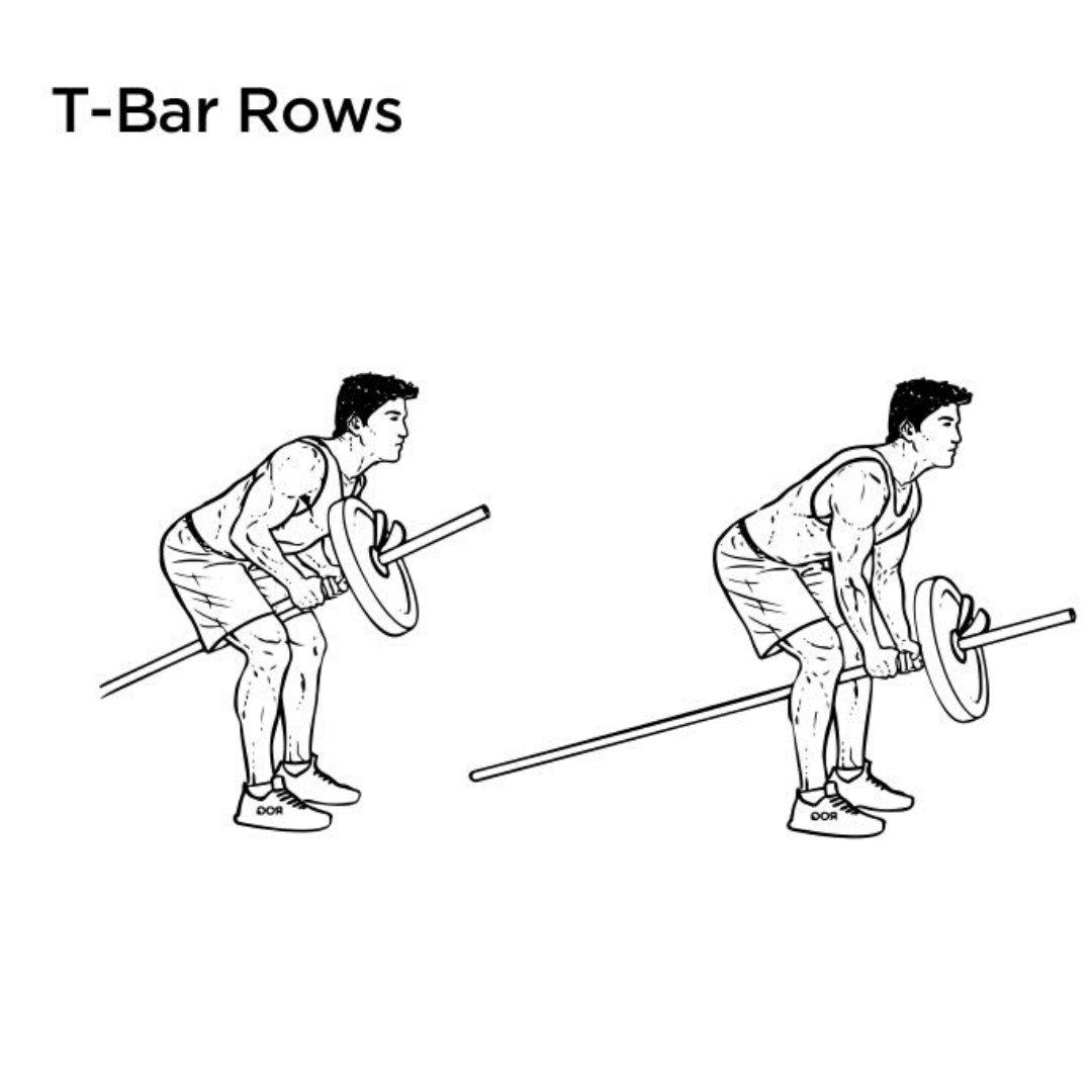 t-bar rear delt row