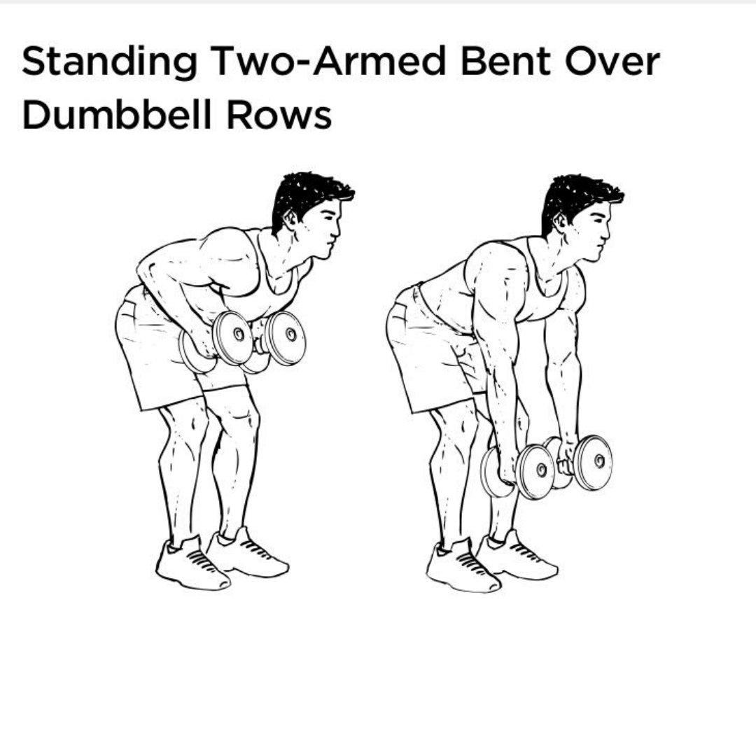 rear delt row dumbbells