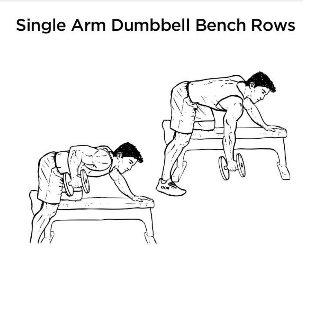 one arm rear delt row