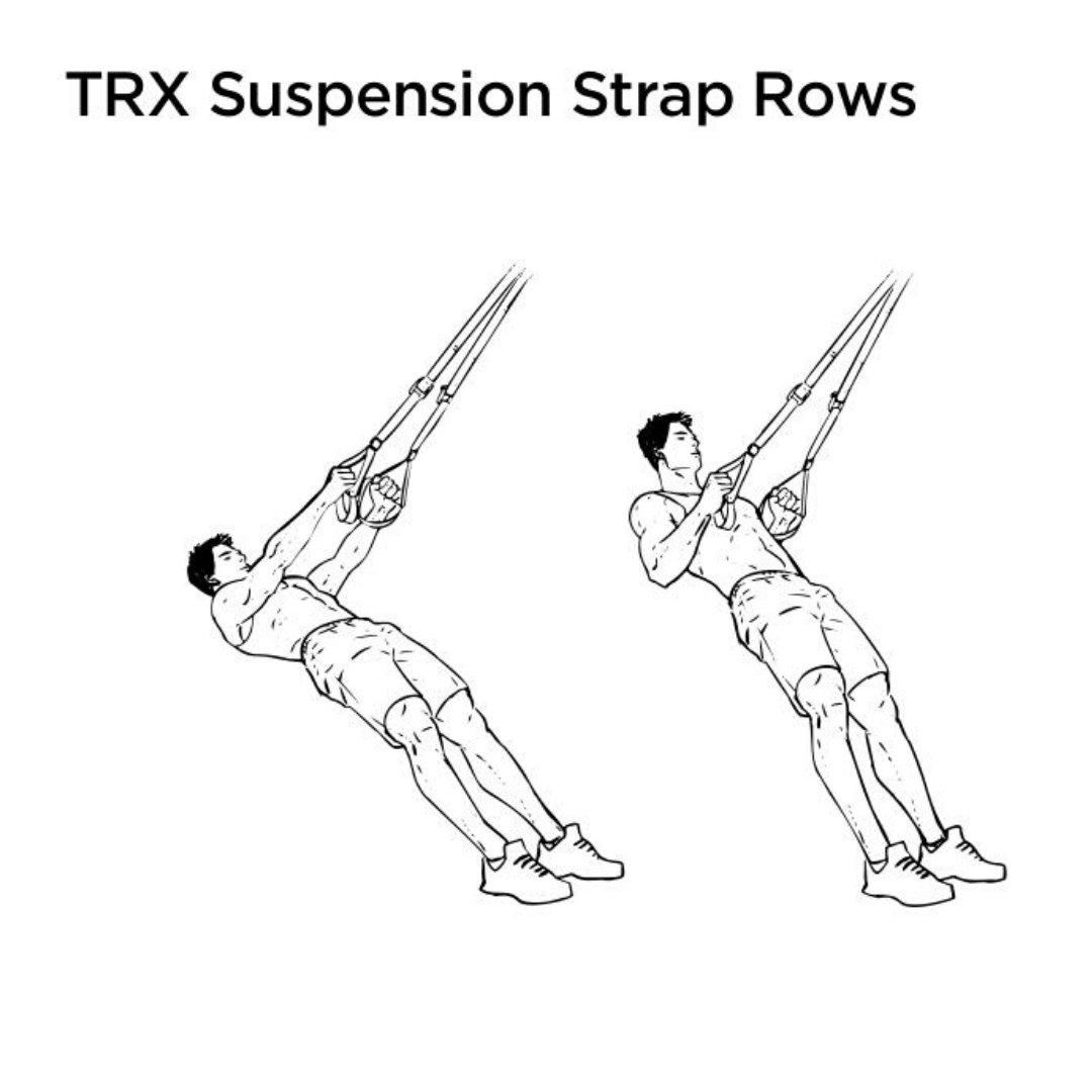 trx rear delt row