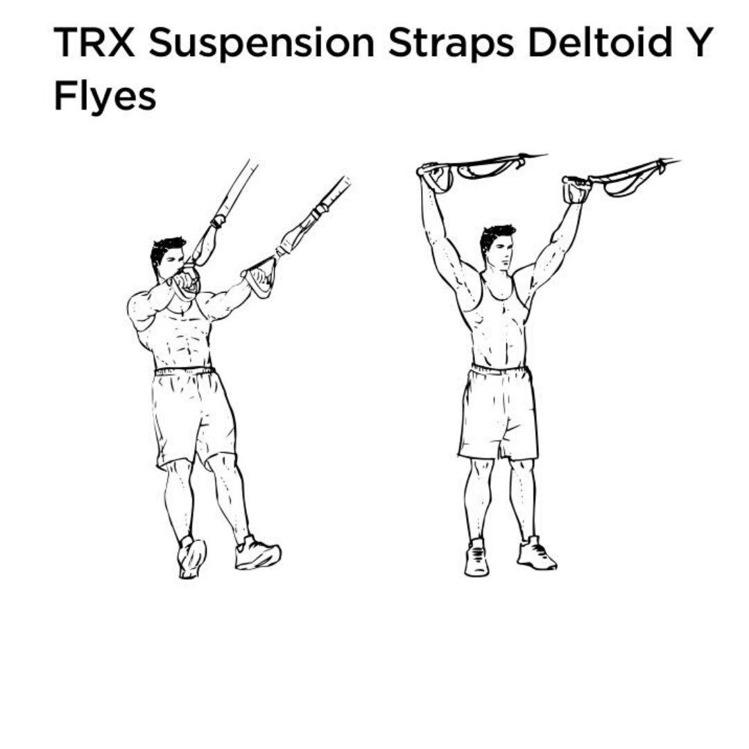 trx rear delt fly Y