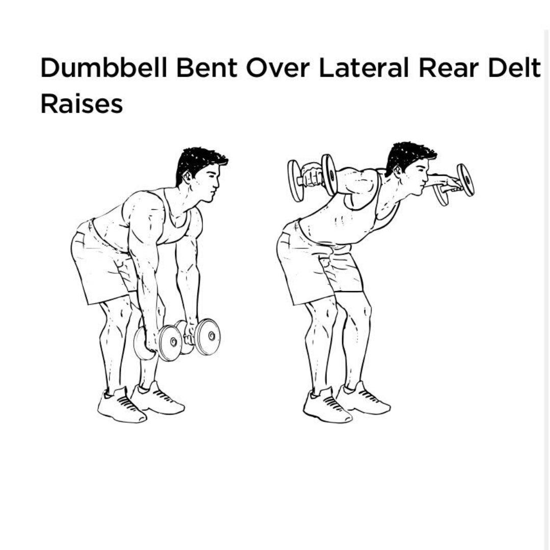 dumbbell rear delt raise