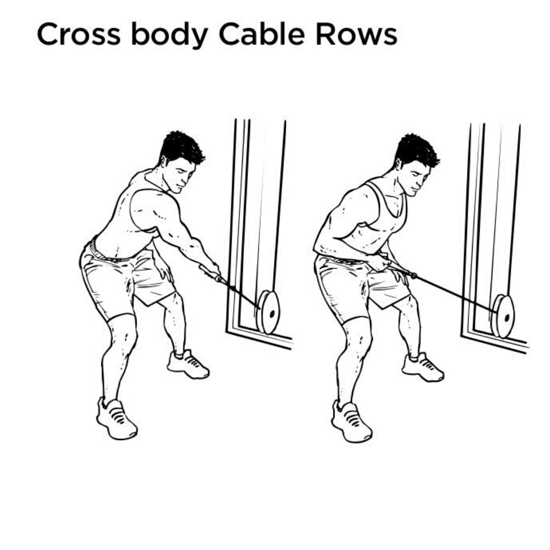 rear delt cable pull cross body