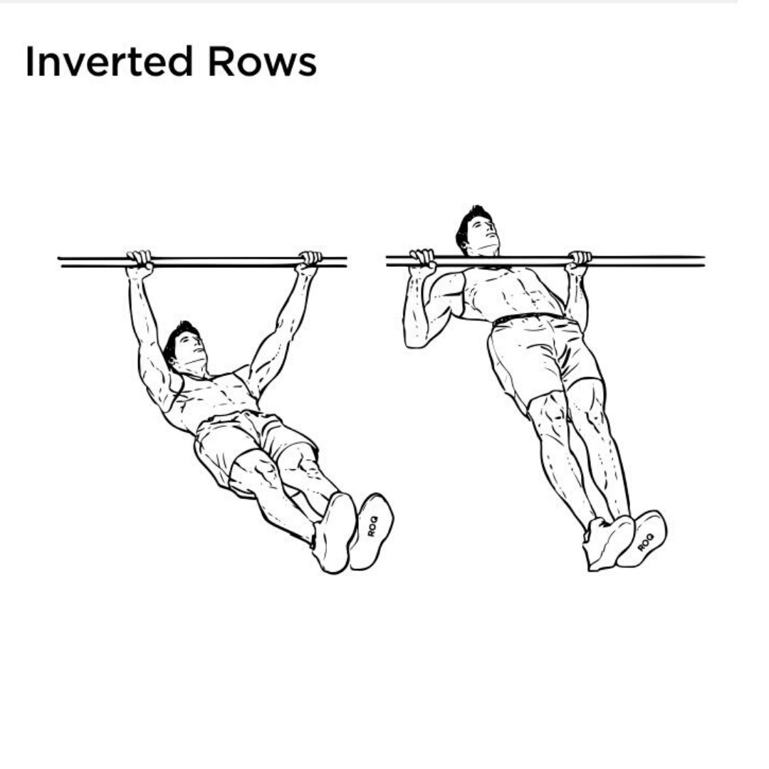 inverted rear delt row