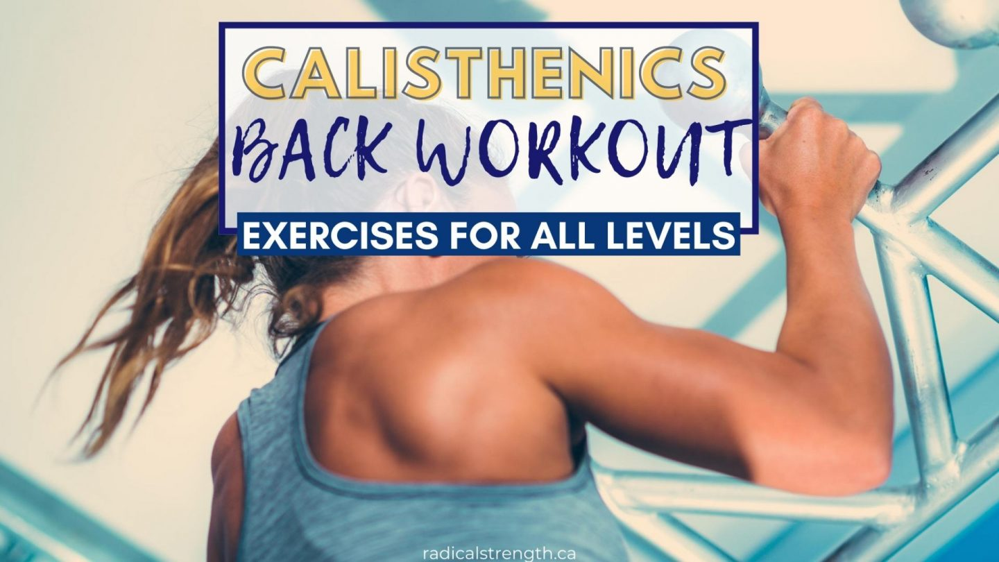calisthenics back workout